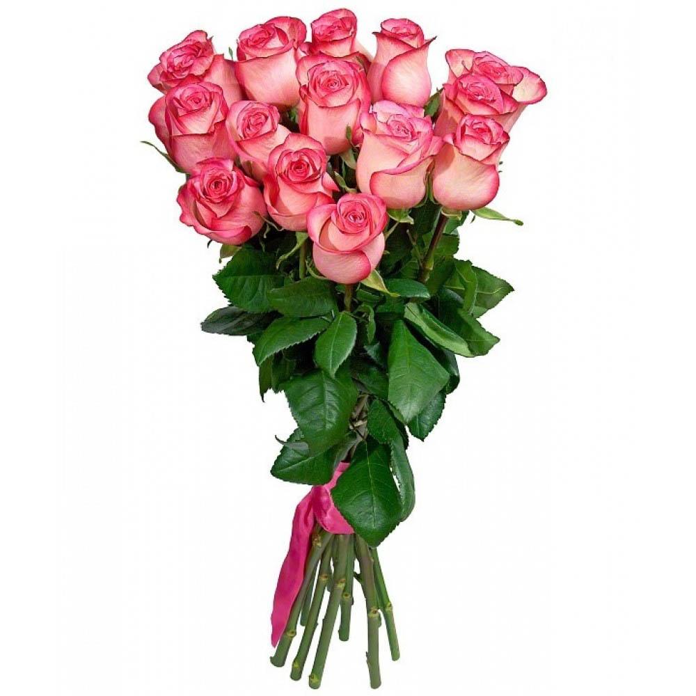 15 роз Хай Меджик