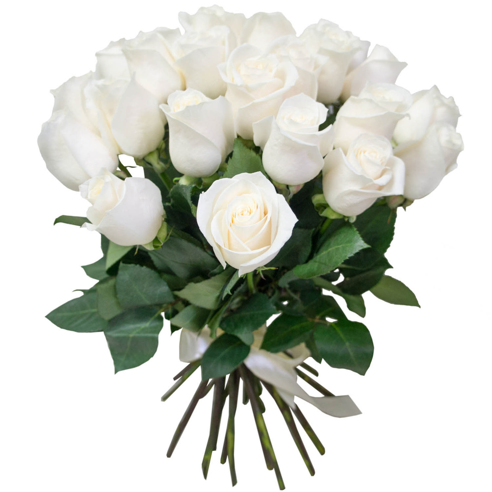 тоже хочу, движущиеся картинки букеты белые розы навыки
