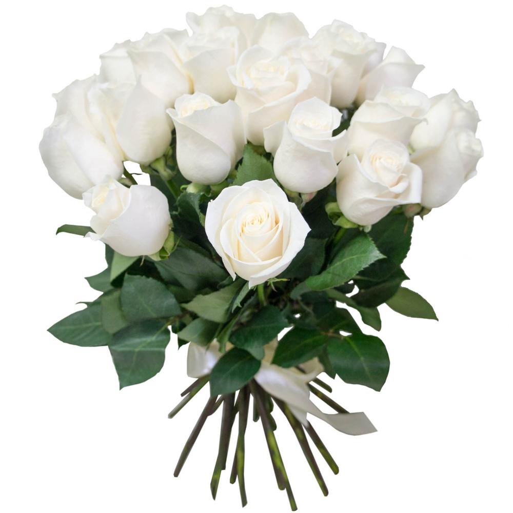 25 белых роз (50 см)