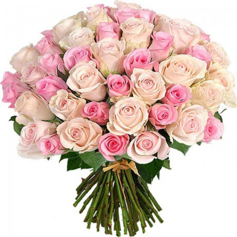 55 розовых роз микс