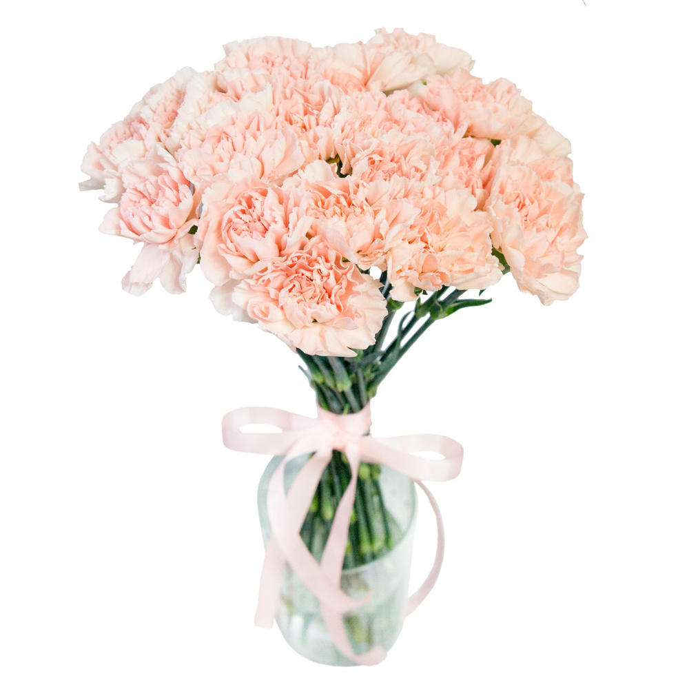 Нежные диантусы в вазе